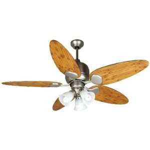 Custom Blade Options Transitional Indoor / Outdoor Ceiling Fan for us