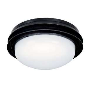 Hunter 2 Light Textured Black White Shade Ceiling Fan Light Kits 28511