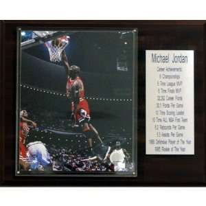 NBA Michael Jordan Chicago Bulls Stat Plaque