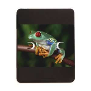 iPad 5 in 1 Case Matte Black Red Eyed Tree Frog