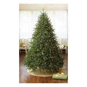 Pre Lit Stowe Spruce Artificial Christmas Tree   1000 Clear
