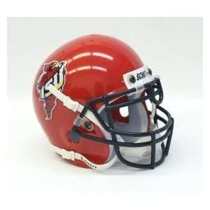 Iowa State Cyclones Schutt Mini Helmet   1995 2002